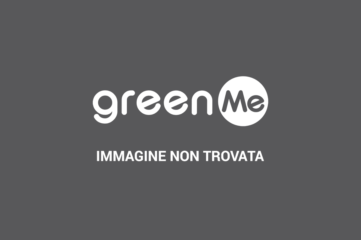 green bike milano
